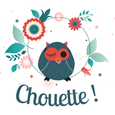 Logo Boutique Chouette!